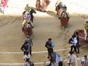 Bullfight09