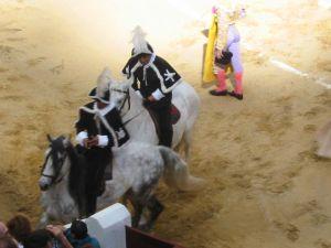 Bullfight14