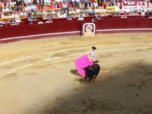 Bullfight17