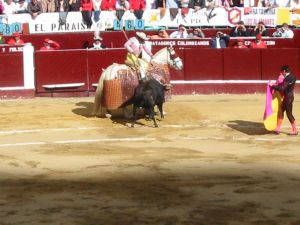 Bullfight22