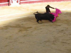Bullfight26