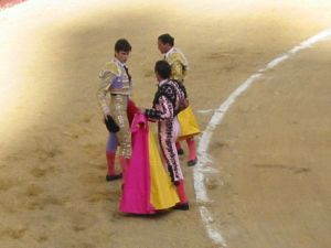Bullfight29