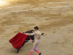 Bullfight31
