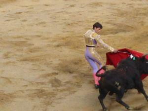 Bullfight32