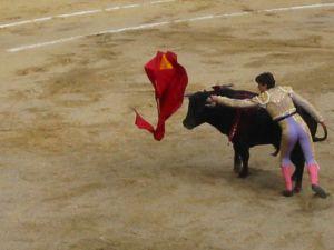 Bullfight34