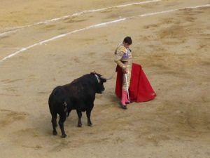 Bullfight36