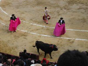 Bullfight38