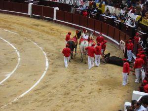Bullfight40
