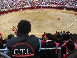 Bullfight42