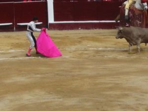 Bullfight45