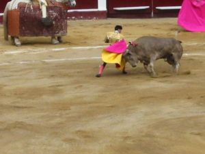 Bullfight47