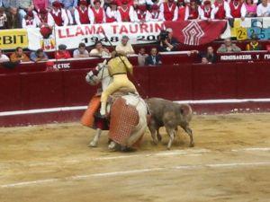 Bullfight48