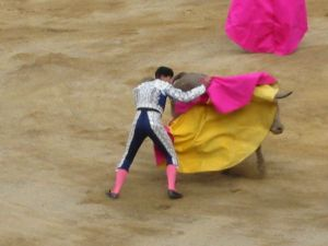 Bullfight51