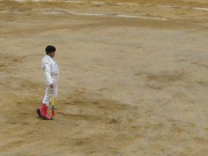 Bullfight53