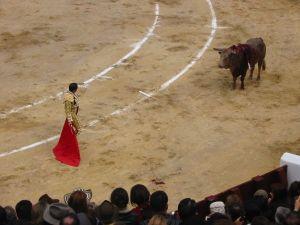 Bullfight57