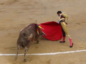 Bullfight59
