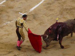 Bullfight60