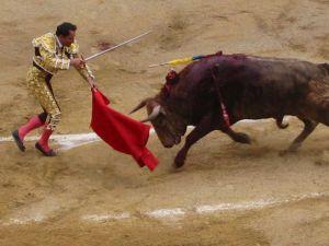 Bullfight62