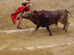 Bullfight63