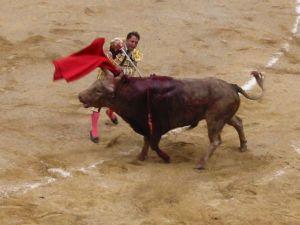 Bullfight64