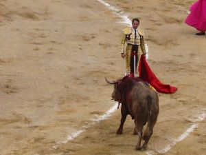 Bullfight65