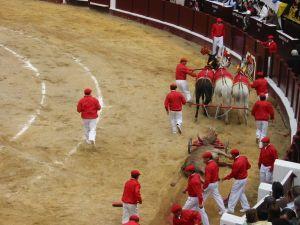Bullfight68