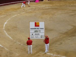 Bullfight69