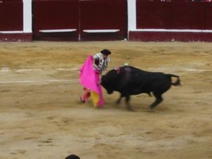 Bullfight72