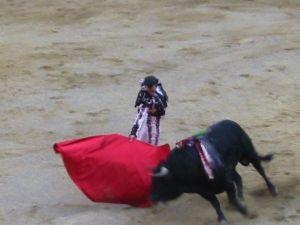 Bullfight73