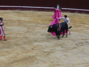 Bullfight74