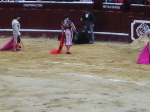 Bullfight75