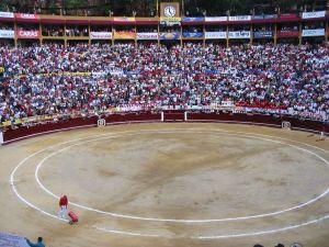 Bullfight78