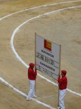 Bullfight79