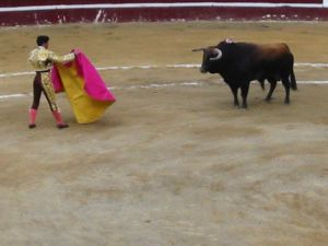 Bullfight80