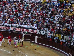 Bullfight86