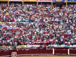 Bullfight88