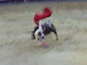 Bullfight92