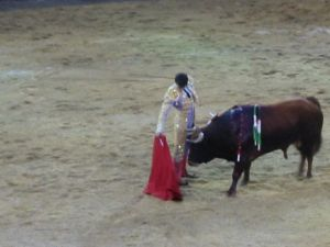 Bullfight94
