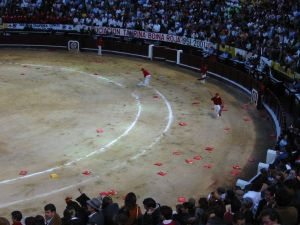 Bullfight96