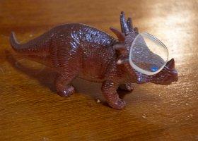 Optostegosaurus