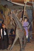 Adriana-ridingGiraffe