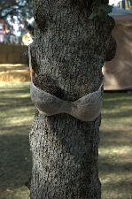 TreeLingerie