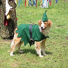 CanineRobinHood
